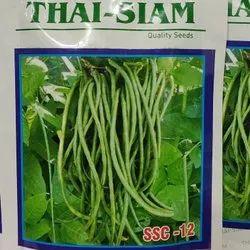 Natural Green Thai Siam Seeds Cowpeas Research 009