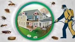 Yearly Residential General Pest Control Management