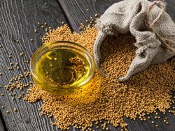 Nine Star Refined Mustard Oil, Packaging Type: Plastic Bottle, Packaging Size: 1 litre