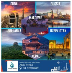 Only Tourist Visa Assistance Service