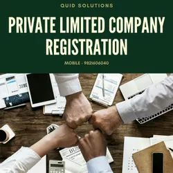 15 Days Private Limited Company Registration Services, Pan India, Professional Experience: 5 Years
