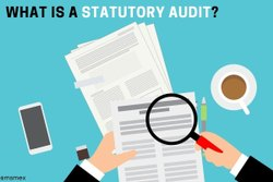 Consulting Firm Corporate Statutory Audit Service