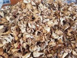 Uttarakhand Dried Oyster Mushroom, Packaging Type: Packet