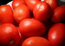 Fresh A Grade Tomato