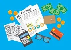 Auditing and Assurance Payroll Accounting Services