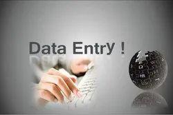 Data Entry Work For Health Insurance, Service Provider