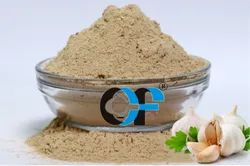 Dehydrated Garlic Powder, Packaging Type: HDPE Poly Bag, Packaging Size: 1 Kg