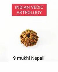 9 Mukhi