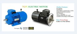 TGLP Motors AC With DC Break