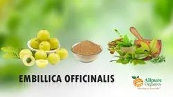 Emblica Officinalis Amla Extract, Packaging Type: HDPE Drum