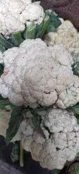 A Grade Fresh Cauliflower, 20 Kg, Packaging: Plastic Bag or Polythene Bag