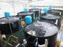 Deebru Water Cooled Aquaculture Equipment, Capacity: 10 Grans To 5 Kgs