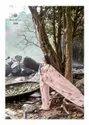 Casual Organza Silk Designer Printed Saree