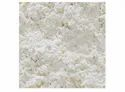 Rr Dehydrated White Onion Powder, Packaging Type: Hdpe Bag, Packaging Size: 20kg