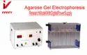 Agarose Gel Electrophores