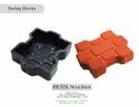 Nexa Paving Mould