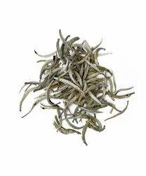 Darjeeling Silver Needle White Tea