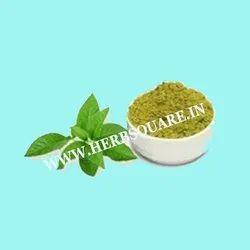 Dried Brown Justicia Adhatoda ( Malabar nut /Adosa, Arusha/Adathodai) For Medicine and Industry