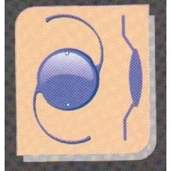 NPC 600HAS Intraocular Lens
