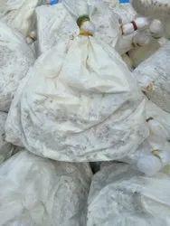 Brown Oyster Mushroom Spawn