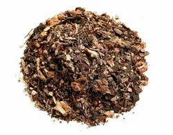 Anthurium Mix Seeds