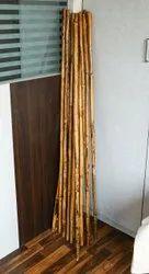 Cane Stick