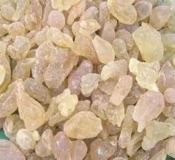 Salai Guggul Extract