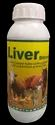 Liver Strong
