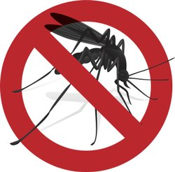 Mosquito Pest Control Service