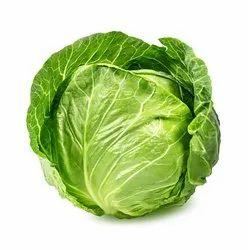 Exotic A Grade Fresh Green Cabbage, Gunny Bag, 20 Kg