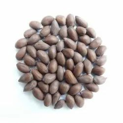 Paras Beej Natural Non GMO Hybrid Cotton Seeds, Packaging Type: Packet, Packaging Size: 1 Kg- 100 Kg