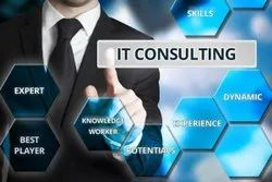IT Consulting Services, in Lucknow