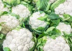 White Fresh A Grade Cauliflower, PP Bag, 50 Kg