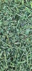 Cool Dry Places Dried Alfalfa Hay, Packaging Type: Plastic Sack Bag