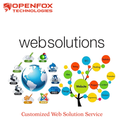 Customized Web Solution Service