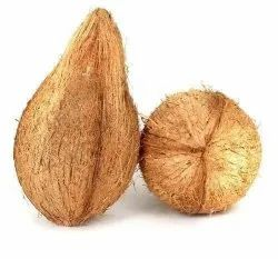 Solid Semi Husked Mature Coconut, Packaging Size: 100 Kg, Coconut Size: Medium