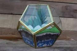 DCI Gold Glass Geometric Terrarium For Plant Holder Indoor Decoration, For Gardening, Size: 16 Cm