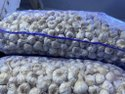 A Grade Garlic 35 Mm, Packaging Size: 50 Kg