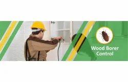 Wood Borer Control Services, Bengaluru