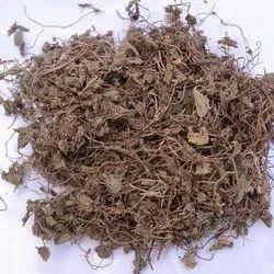Hansaraja Leaf