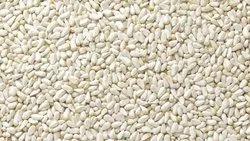 Safflower Oil Seeds
