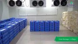 Dairy Cold storage room
