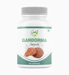 Ganoderma Capsule