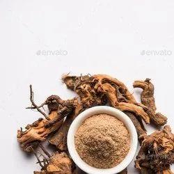 Chitrak Root Powder