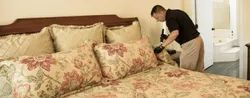 Residential Bed Bug Pest Control Services, Jaipur