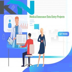 11 Month Mca Health Insurance Data Entry Project, Business Provider