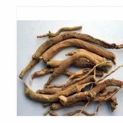 Punarnava Roots