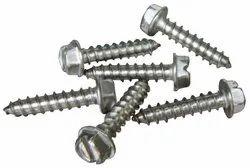 Full Thread Steel Screws, Polished, Size: 2 Inch