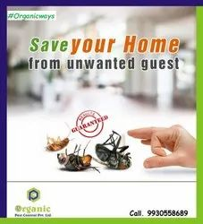 Home Chemical Treatment Biological Pest Control