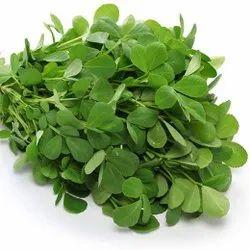Fresh Fenugreek Leaves, Packaging Size: 10 Kg